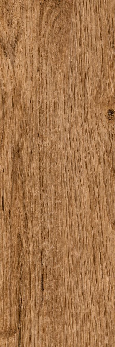 English Oak thumbnail