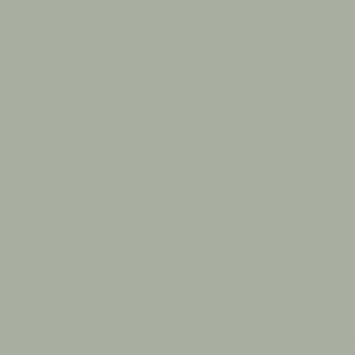 Light Gray thumbnail
