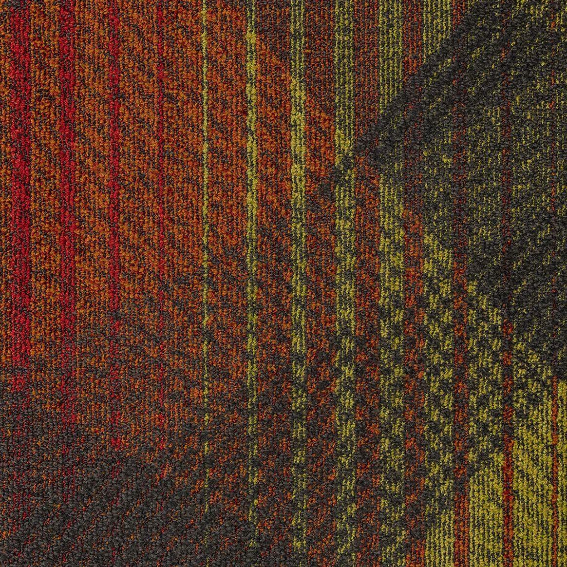 Full Spectrum thumbnail